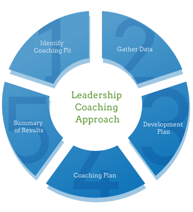 leadership coachin approach